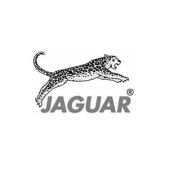 Jaguar Scissors